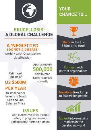 Brucellosis: A Global Challenge